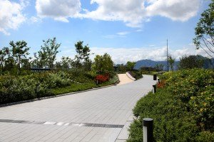 Kai Tak roof Top Garden 2