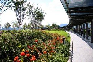 Kai Tak Roof Top Garden