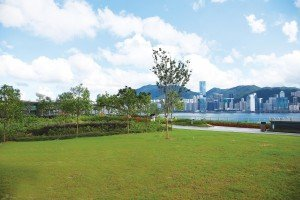 Kai Tak Roof Top Garden 3